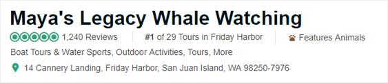 Maya's Legacy Whale Watching TripAdvisor ranking